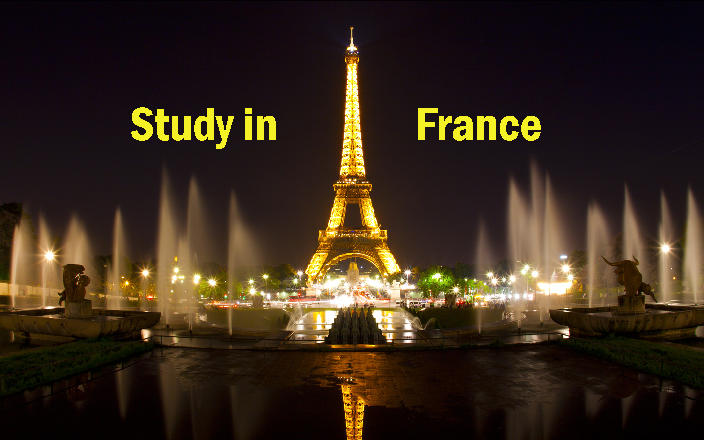 france study consultants_www.lnconsultancy.com